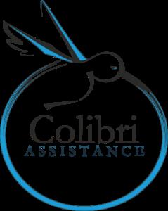 LE LOGO Colibri ASSISTANCE image bitmap véctorisee logo détaillé 500 px
